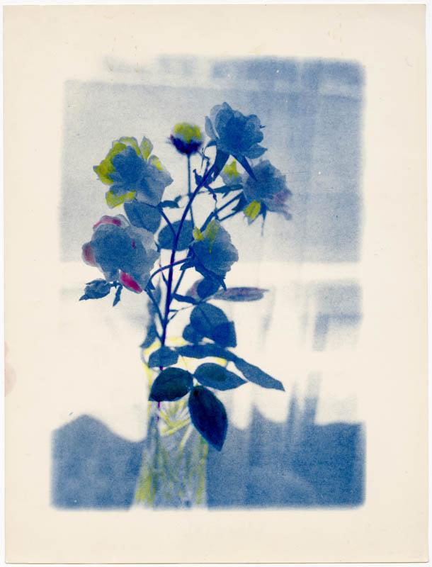Штучні троянди